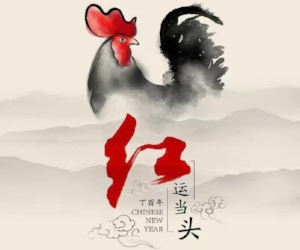 2017 - The year of the Fire Rooster