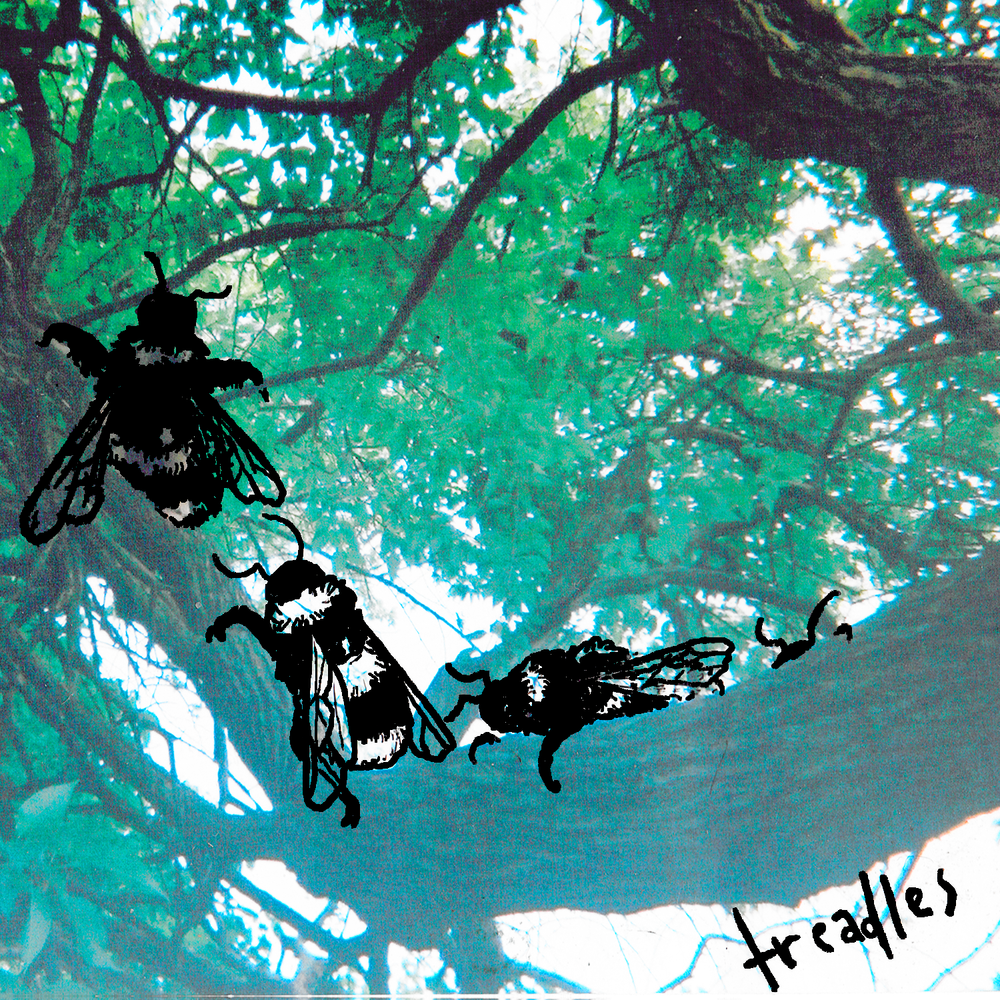 treadles-bees-digital-2.png