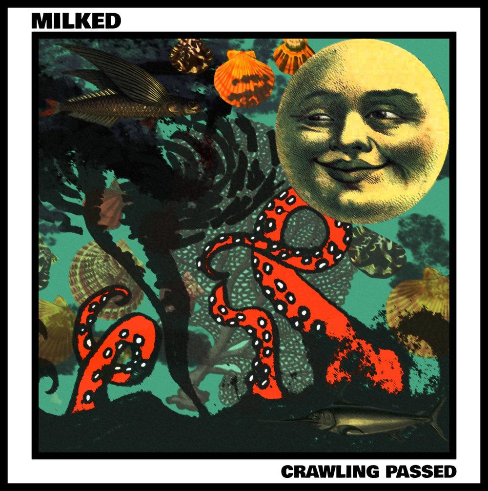 milked cover1.jpg