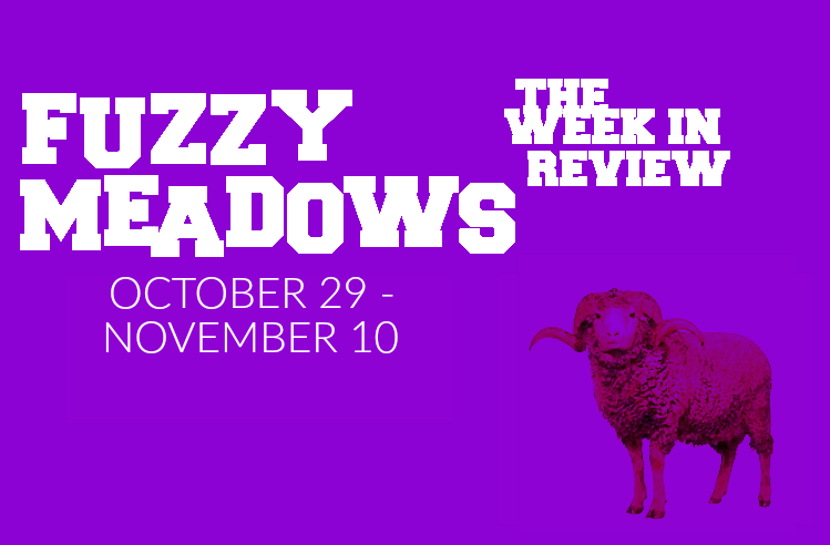 64d939fa2f73b Fuzzy Meadows  The Week s Best New Music (October 29th - November 11th)