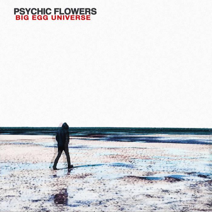 psychic flowers cover.jpg