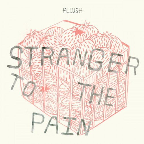 pllush cover.jpg