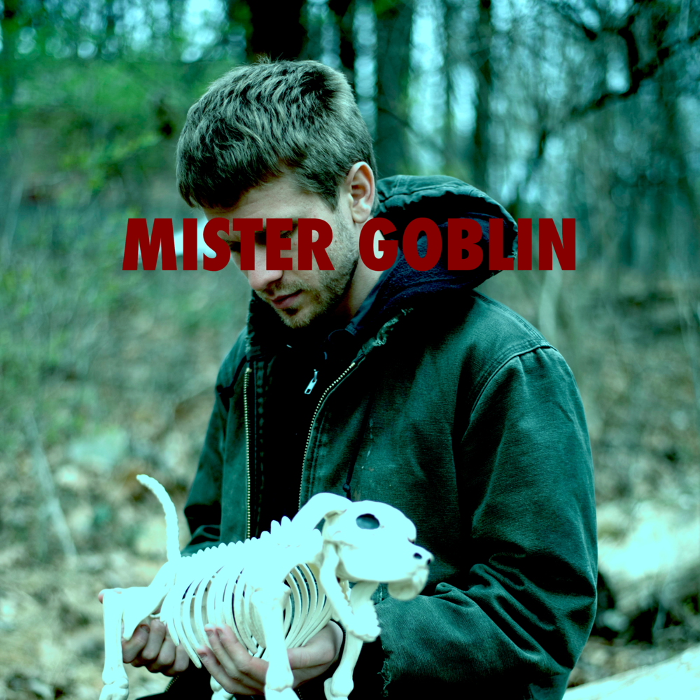 mister goblin cover square.png