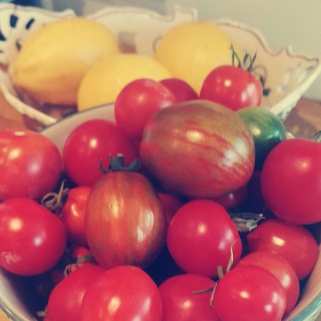 Harvest!!! They taste of all the sunshine we've had 💛☀#vitC #harvest #garden #organic