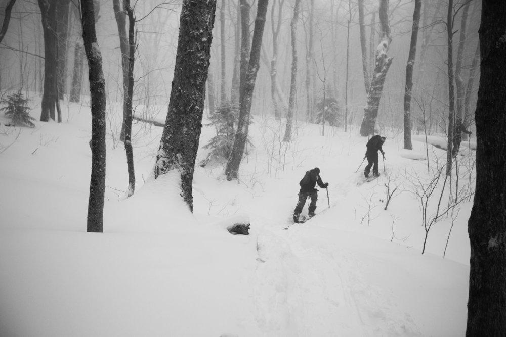 skinning in deep snow.jpg