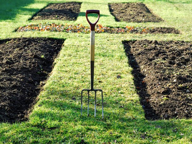 istock-8235062_vegetable-garden-bed-ready-for-planting_s4x3_lg