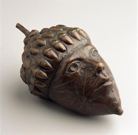 acorn head