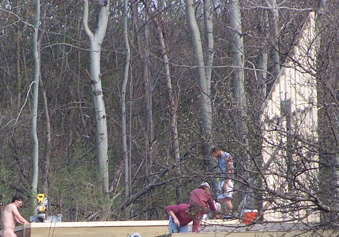Workers building the garden cabin