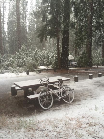 Snow in Yosemity