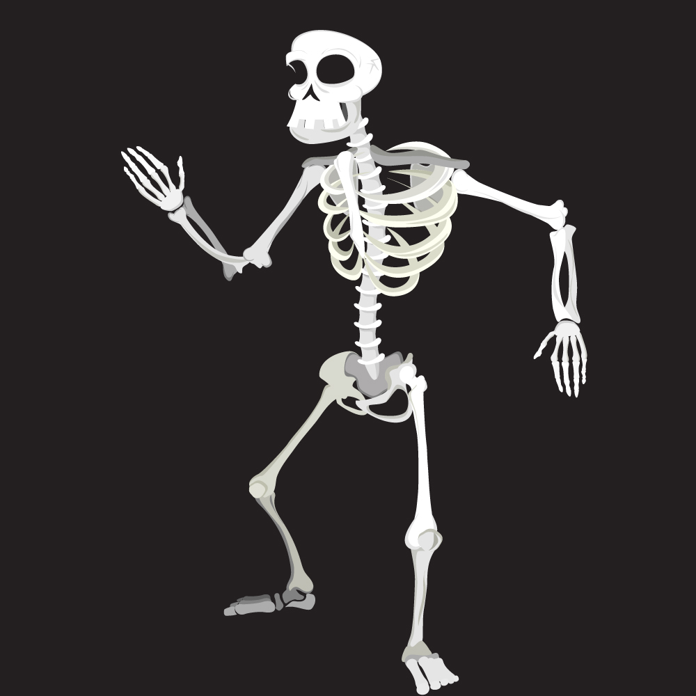 2D Skeleton Character Design for Animated Halloween Project