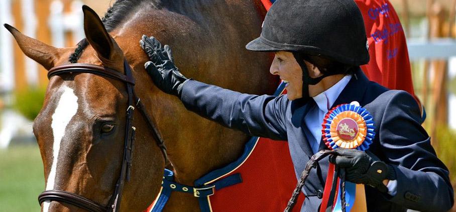 Professional-Horse-Training-Barn.jpg