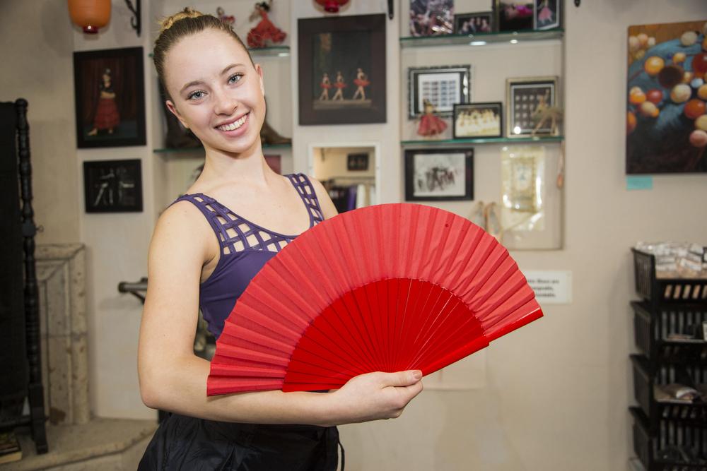 FlamencoFanMCU.jpg