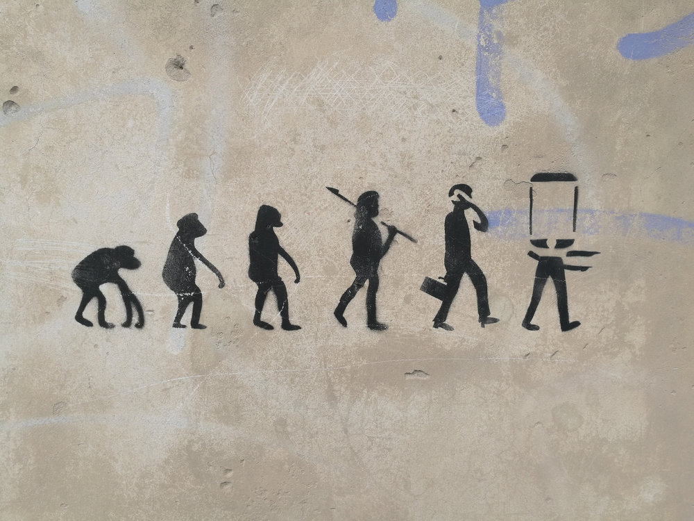 The Cyber Evolution