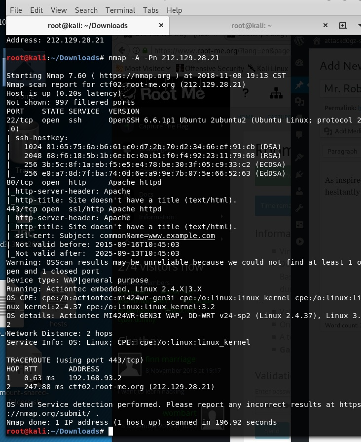 Nmap scan performing enumeration of the target