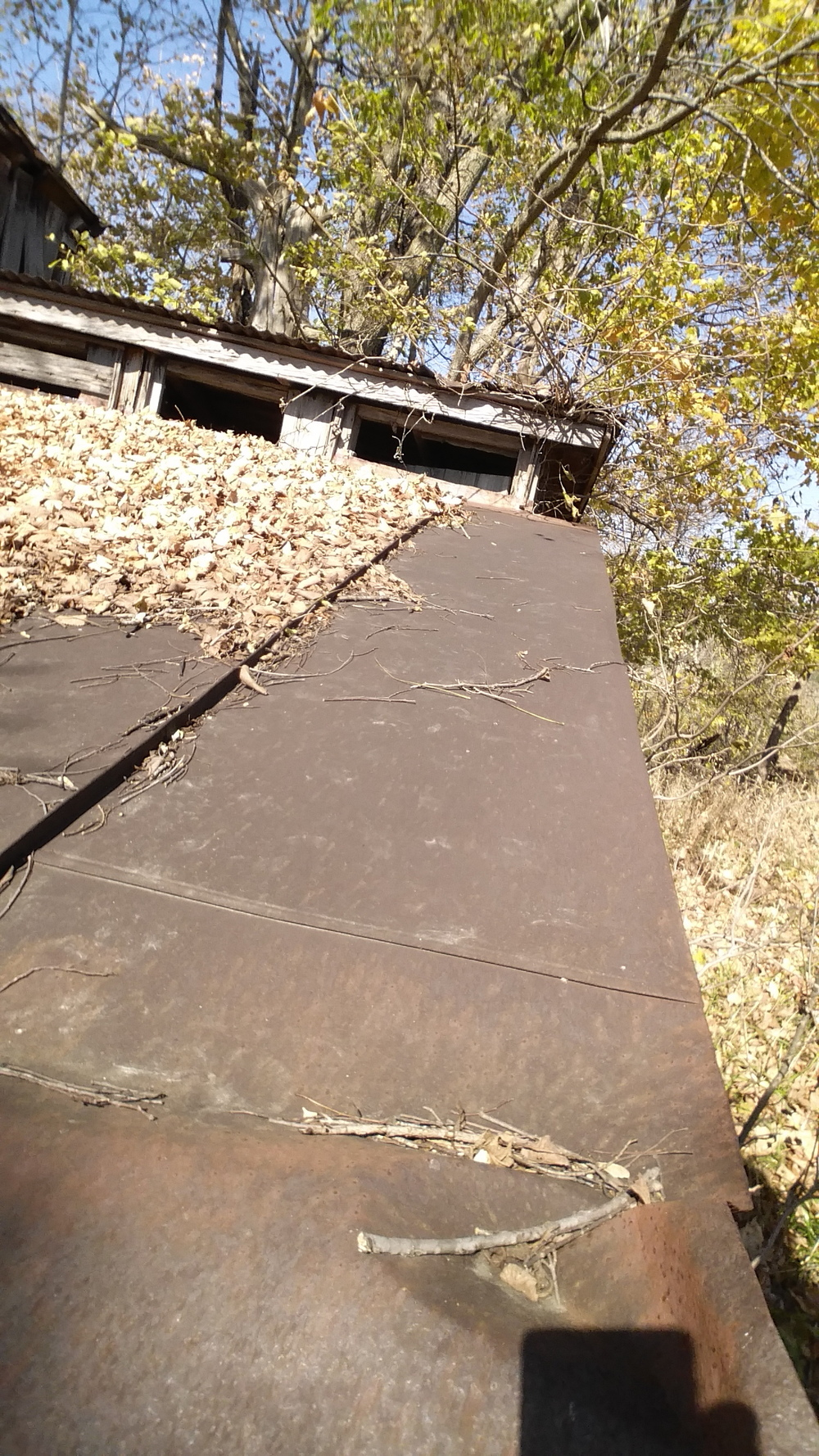 rusted tin roofing.jpg