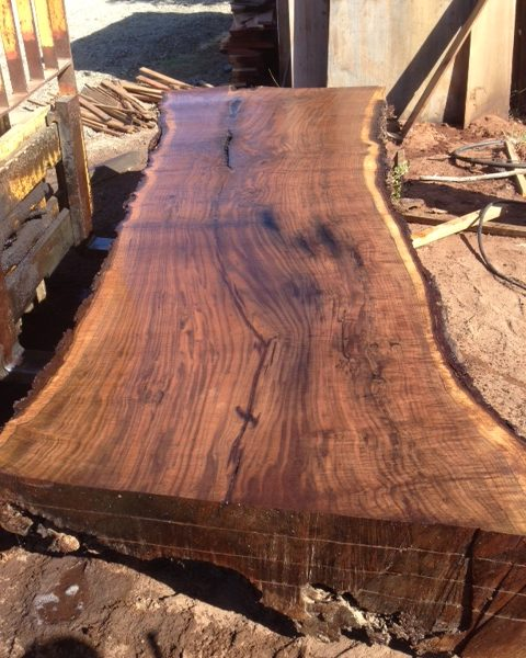 Call for information about Live Edge Lumber  317-617-2773
