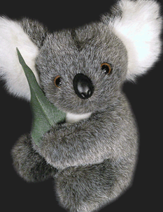 This plush Jimmy toy looks like the real Jimmy! You can buy it at http://www.koalaexpress.com.au/jimmy.htm