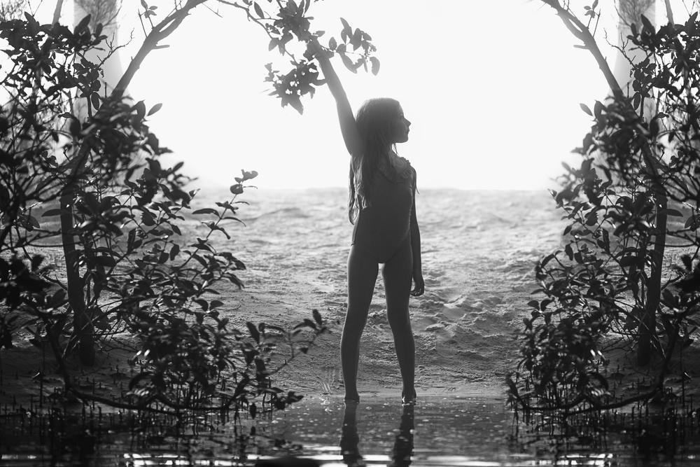 Like a Mangrove