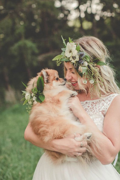 Puppy Love - Include Your Dog In Your Wedding Day | B&E Lucky In Love Blog