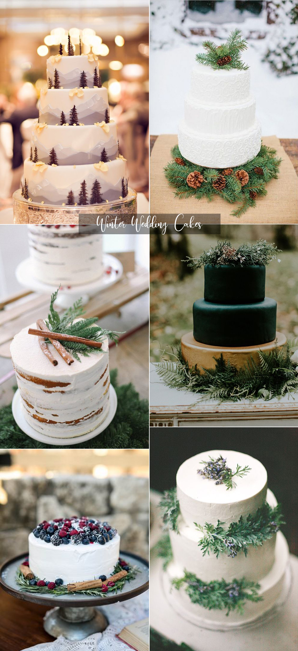 {Image Sources: Pine tree cake featured on  Style Me Pretty  - photo by  Real Photography ; White and Pine cake featured on  Happy Wed ; Cinnamon and white cake featured on  Brit + Co ; Dark green cake featured on  Green Wedding Shoes  - photo by  Hazelwood Photography ; Fruit and white cake featured on  Wedding Wire  - photo by  Paisley Layne Photography ; Purple, green and white cake featured on  Brides }