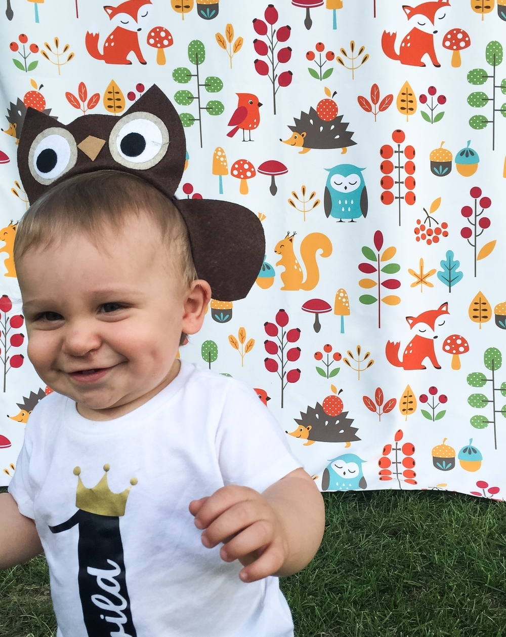 Woodland Animal photo back drop for DIY photo booth