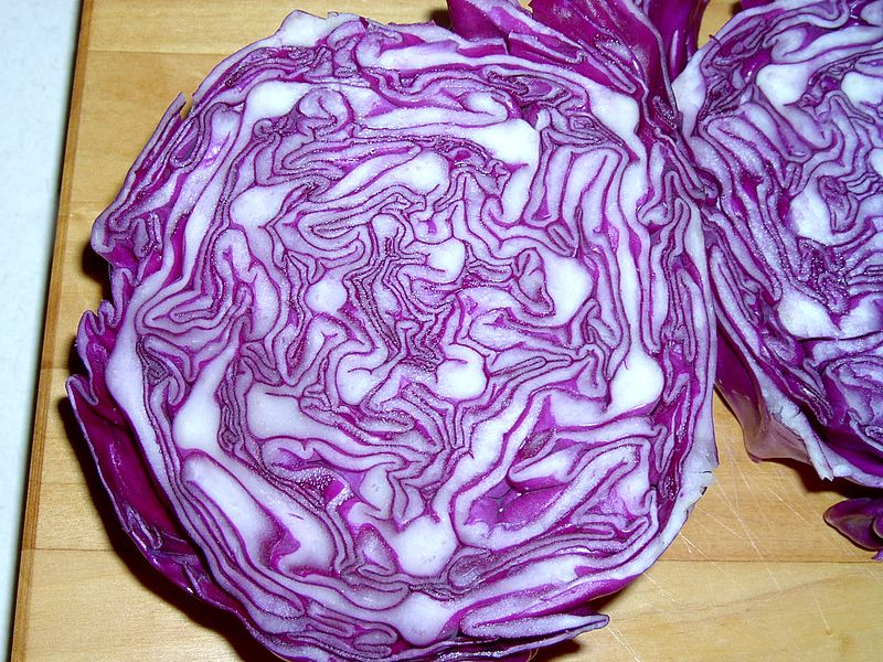 Red cabbage has anti-inflammatory properties that can help relieve pain and swelling from mastitis.