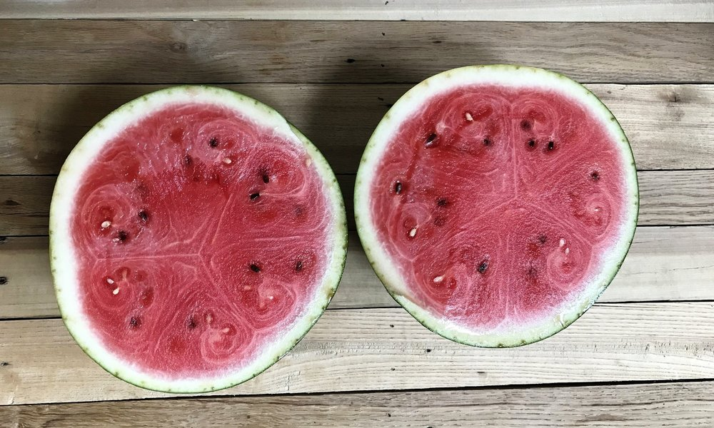 5 Signs You're Addicted to Watermelon. Gift ideas for watermelon lovers.