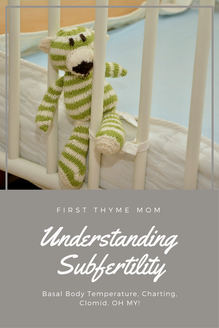 Understanding Subfertility - How To Chart Your Basal Body Temperature - First Thyme Mom