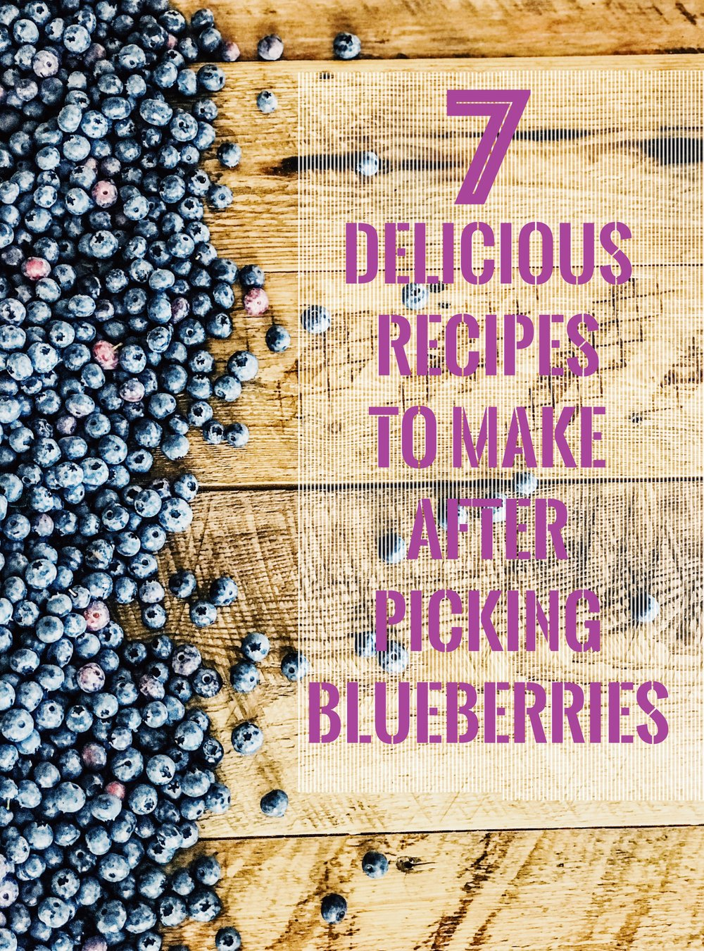 7 Recipes To Make With Blueberries. How to make Blueberry Jam, Blueberry Ice Cream, Blueberry Pancakes, Blueberry Yogurt Berries, Blueberry Peach Salsa, Blueberry Pie, Blueberry Angel Food Cake Whipped Topping Dessert. What to do with blueberries after you go blueberry picking. #blueberrypie #blueberryicecream #blueberrypancakes #blueberrysalsa #blueberryyogurtberries #blueberrytart #blueberrypie
