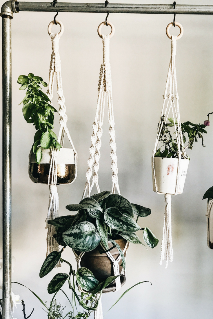 DIY Rolling Herb Garden. How To Make an Indoor Hanging Herb Garden.