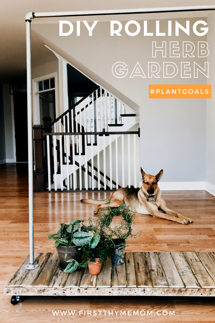 DIY Rolling Herb Garden. How to create a hanging garden in your home. #houseplants #greenplants #herbgarden