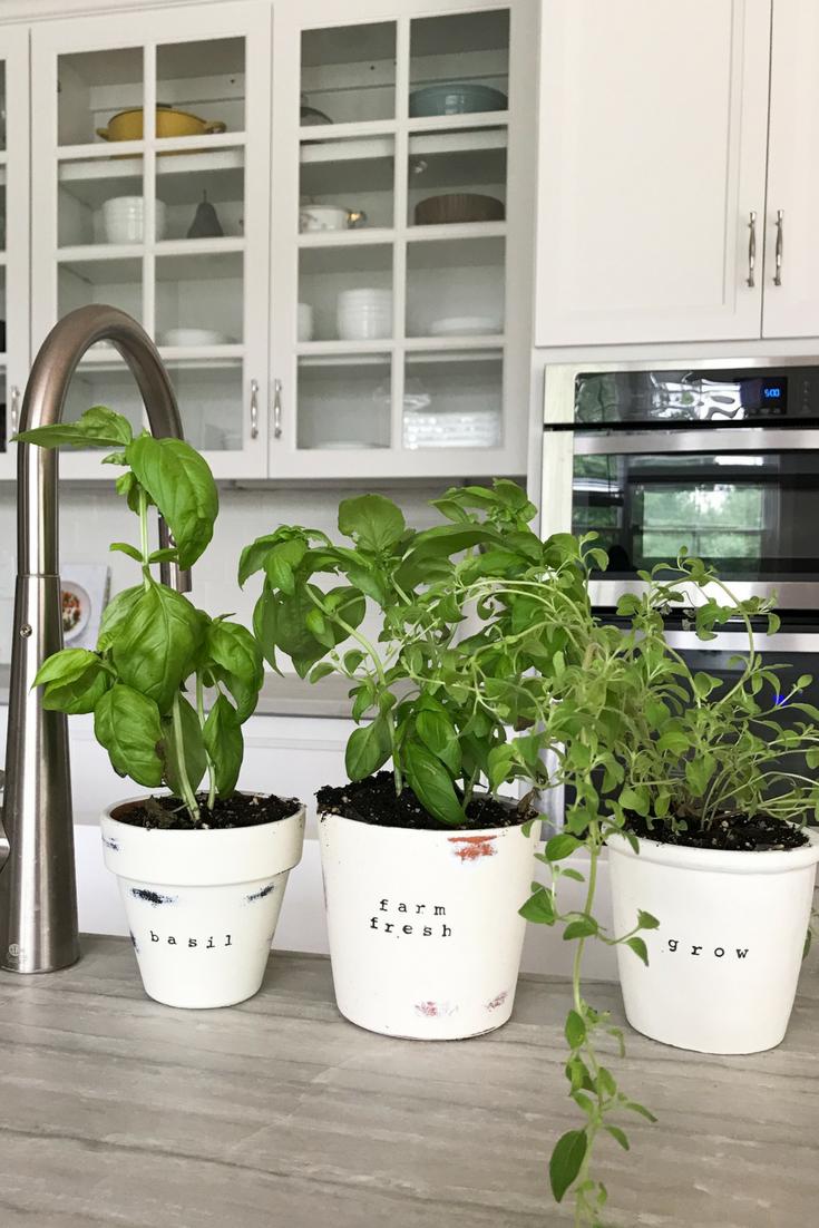 Rustic Terra Cotta Herb Plant Pots. DIY Rolling Herb Garden. Growing herbs in your home.