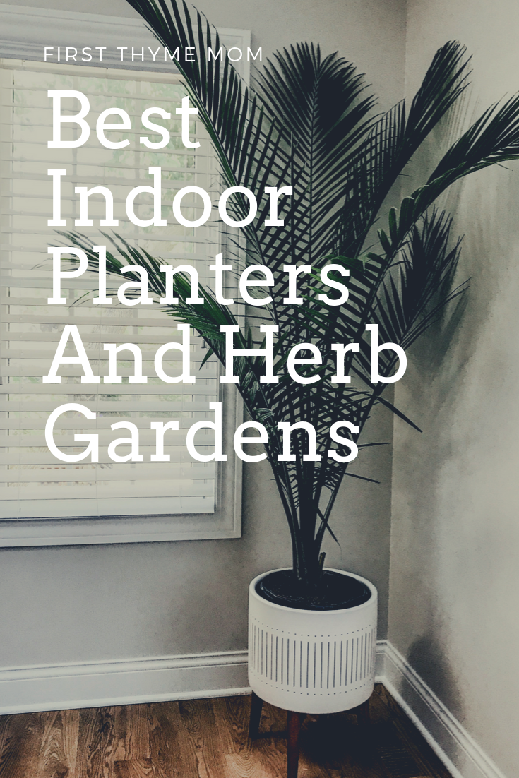 Best Indoor Planters And Herb Garden Ideas. Decorative Indoor Statement Planters And Gardens For Your Home. Ceramic and decorative floor planter for palm tree. West Elm designer floor planter. #indoor #planters # palm #tree