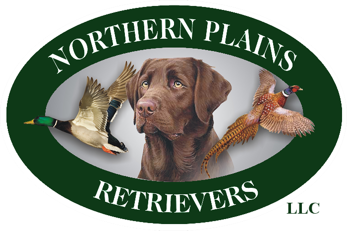 Northern Plains Retrievers
