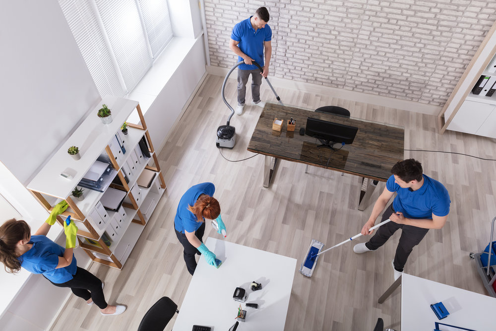Recurring Standard Cleans and Deep Cleans -