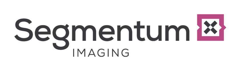Segmentum Analysis Ltd