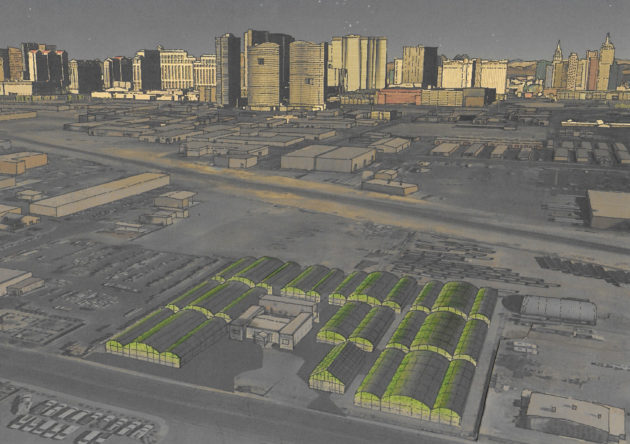 Renderings of the future Urban Seed greenhouse array.