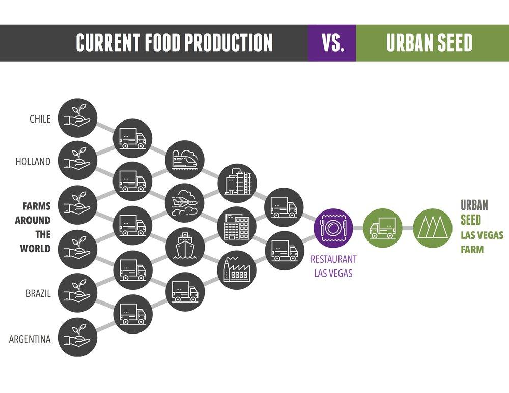 Urban Seed: Food Supply Chart