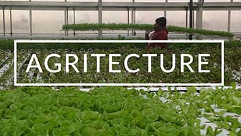 Agritecture