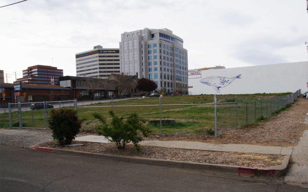 A farmable lot near downtown Reno - Brian Bahouth