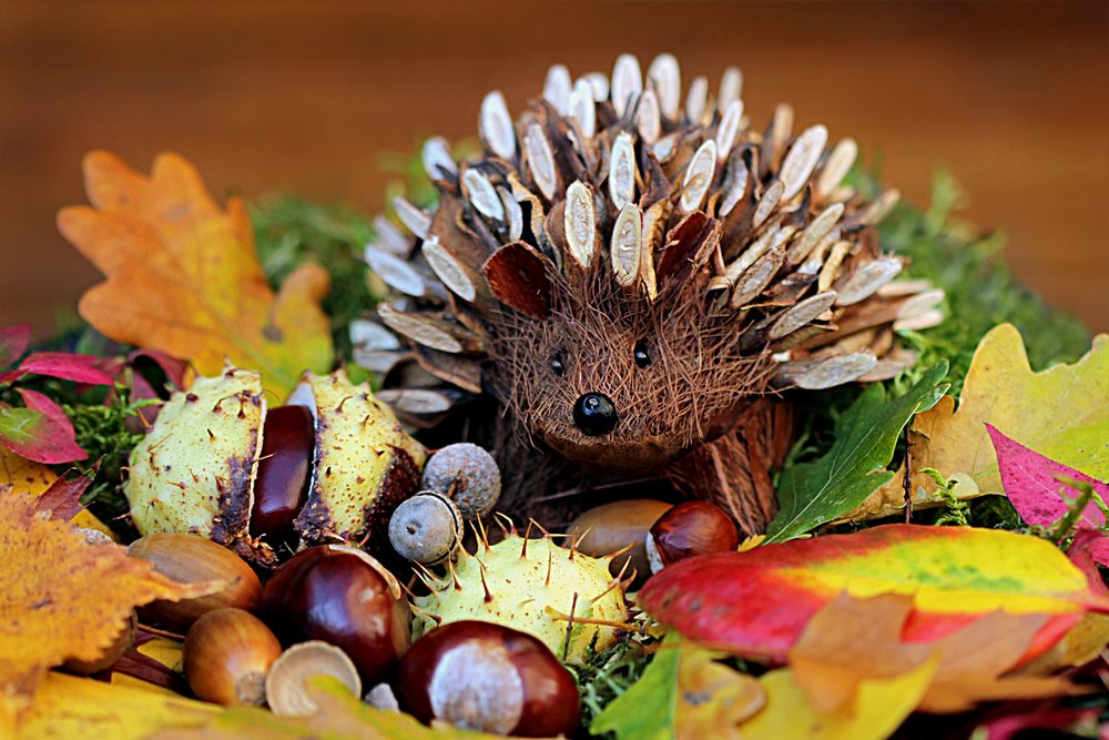 still-life-hedgehog-decoration-herbstdeko.jpg