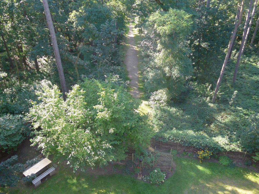 Blick auf Grundstück_2_©BEWAHREN Ferienhaus eG P1020168.jpg