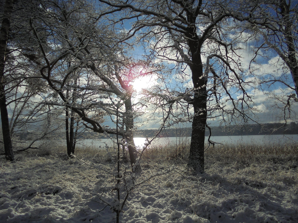 Winter_5 Wintersonne_2_©BEWAHREN Ferienhaus eG.jpg