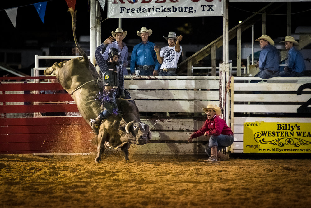 Selective breeding of bulls has led to muscular and stronger bulls every year, making bull riding increasingly difficult and dangerous. Bull riding is dubbed to be the most dangerous organized sport in the world. Boerne Rodeo 2017.