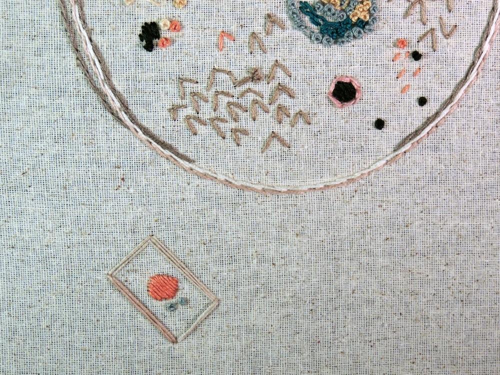"""Petri Dish"" Detail"