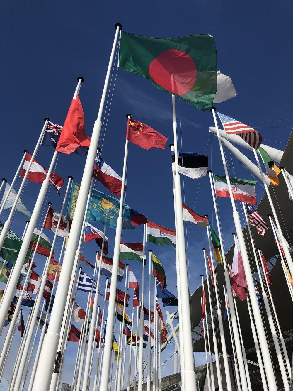weksummit.flags.jpeg