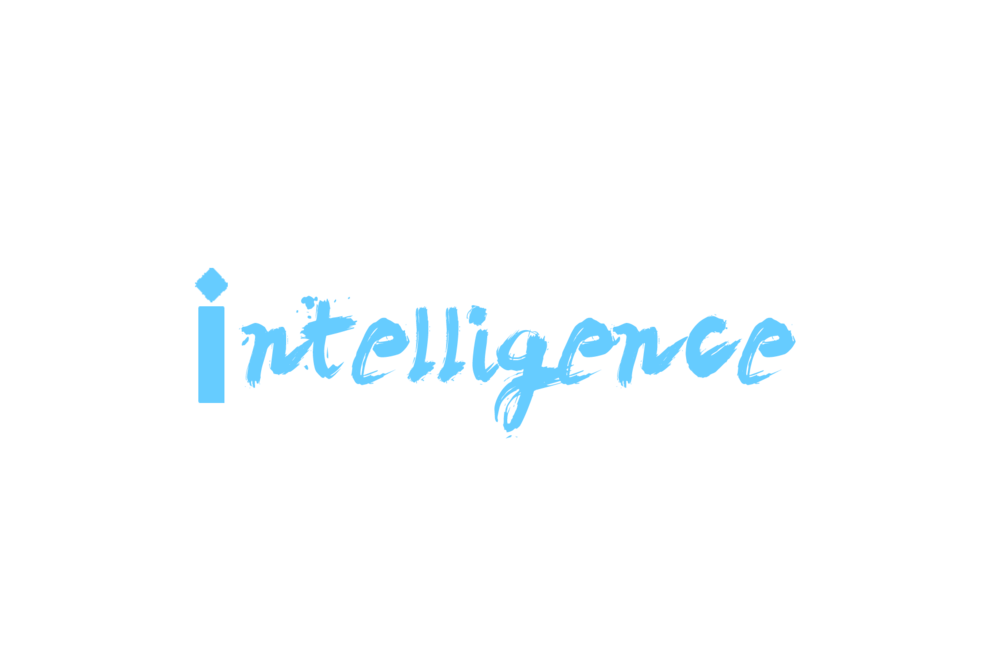 Marketing Intelligence Agency