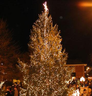 Christmas Tree Lighting & Christmas Tree Lighting u2014 Jason Binder Alpharetta City Council azcodes.com