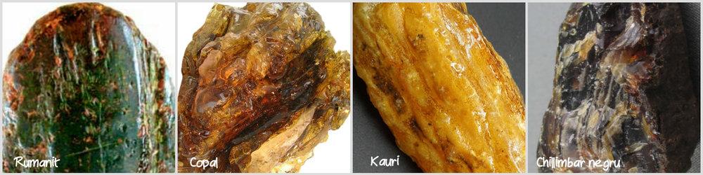 Varietati de Chilimbar (Rumanit, Copal, Kauri, Negru)