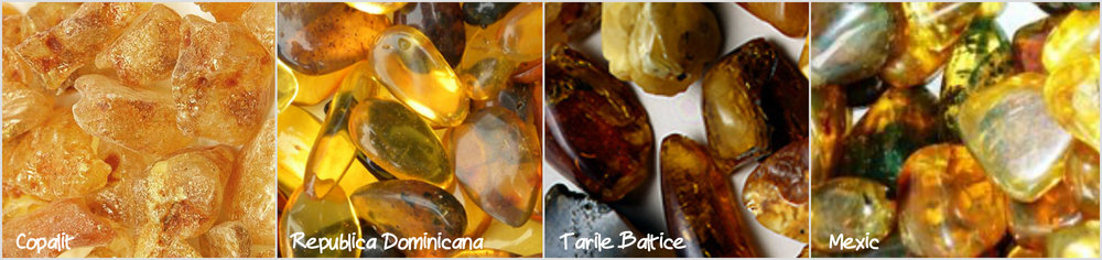 Varietati de chilimbar - 1. Copal (Copalit) din Africa; 2. Republica Dominicana. 3. Tarile Baltice. 4. Mexic